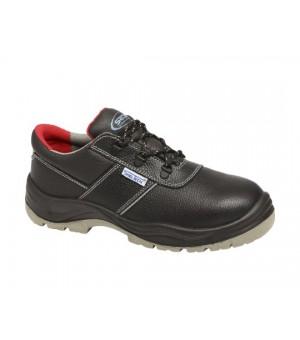 harvey calzatura bassa